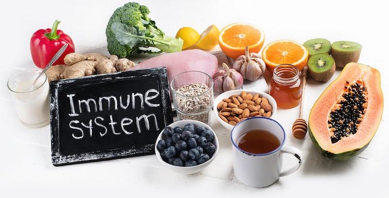 alimentation, immunité, prébiotiques, probiotiques, microbiote